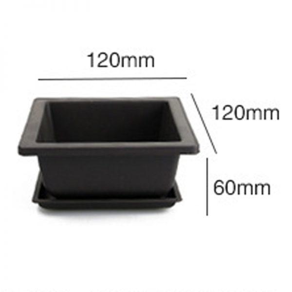 Bonsai Pot Plastic Plant Box 3