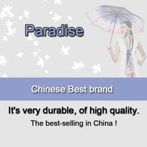 Compact Umbrella Windproof Foldable Brolly