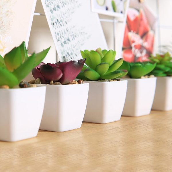 Fake Succulents Potted Artificial Plant 2