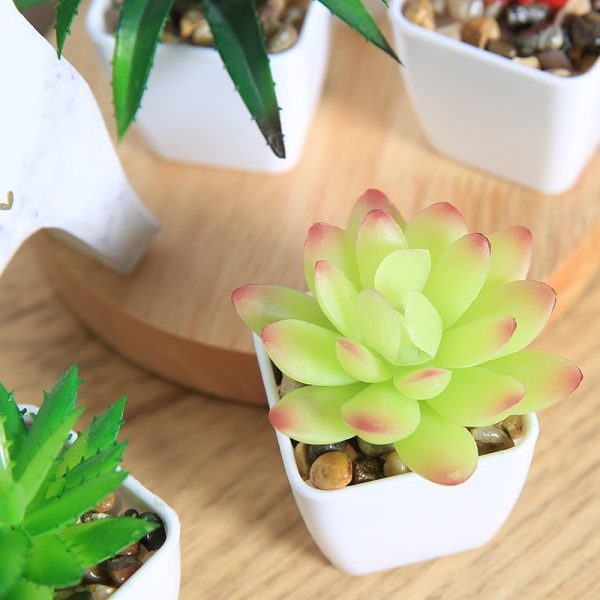 Fake Succulents Potted Artificial Plant 3