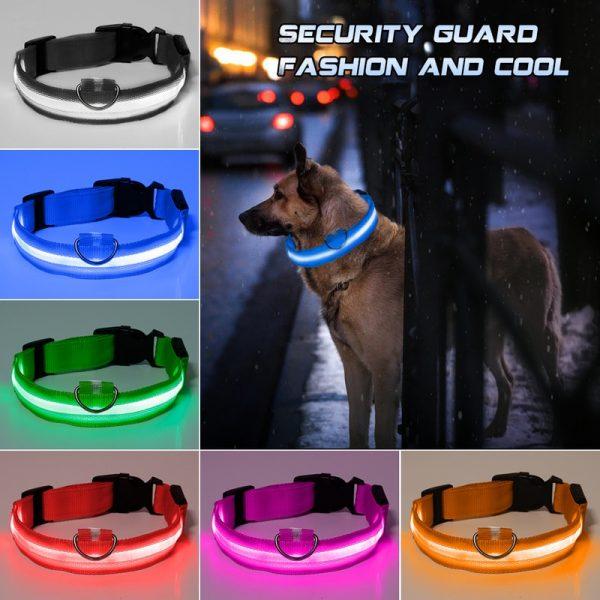 Glowing Dog Collar LED Safety Leash 2