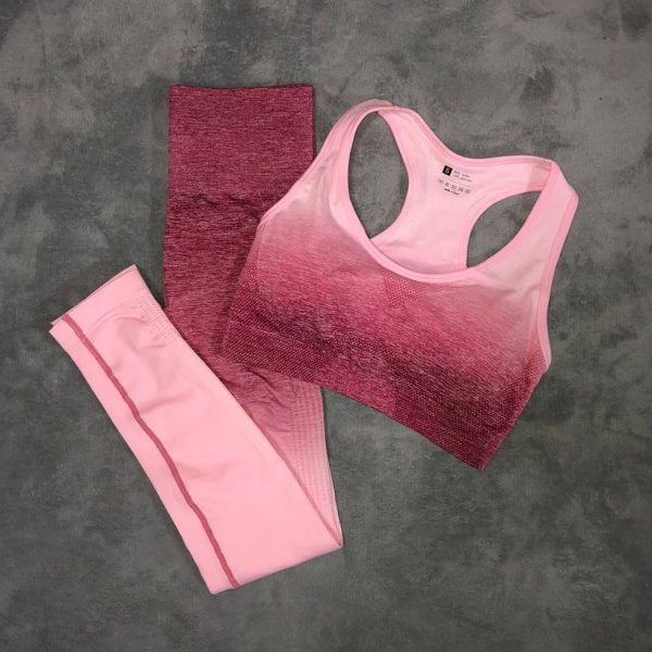 Gym Outfits for Ladies 2Pc Set