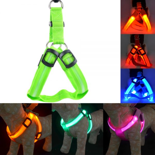 Light Up Dog Harness Rechargeable Light 2