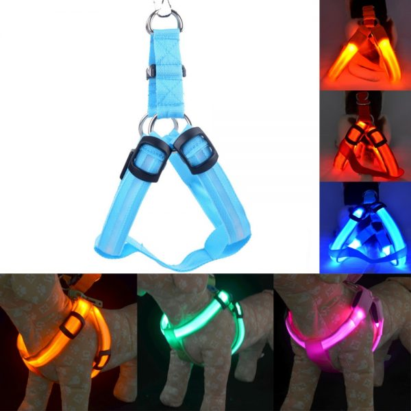 Light Up Dog Harness Rechargeable Light 3