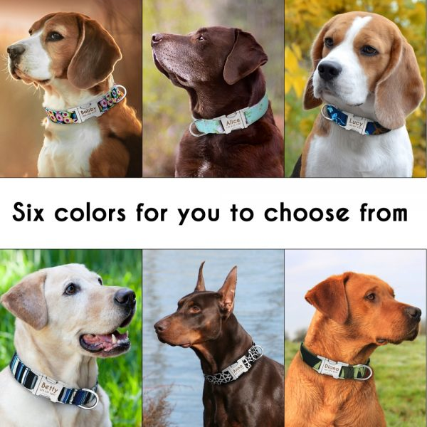 Personalized Dog Collars Engraved Nameplate 3