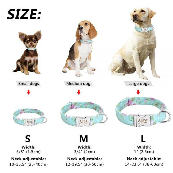 Personalized Dog Collars Engraved Nameplate 4